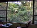 長楽園の部屋からの眺望
