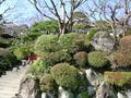 富士屋ホテルの庭園