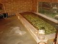 藍染と懐石料理の宿たてしな藍の大浴場その2