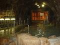 ホテル浦島の洞窟風呂「忘帰洞」(脱衣所方向)