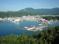 ホテル浦島の眺望