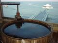 梅樽温泉ホテルシーモアの樽風呂からのオーシュンビュー