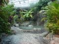 ホテルカターラ福島屋のジャングル風呂その3