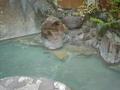 松川渓谷温泉滝の湯その2