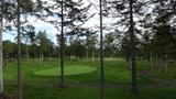 ヒルトンニセコビレッジのゴルフ場のグリーンまわり