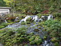 日本名水百選「ふきだし公園」