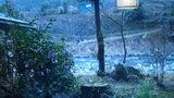 嵯峨沢館の部屋の露天風呂からの眺め