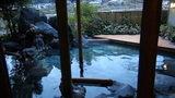 嵯峨沢館の露天風呂の湯船