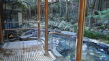 嵯峨沢館の「寝覚の湯」の湯船