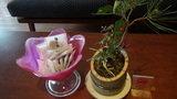 嵯峨沢館のロビーに置いてある「種なし梅」