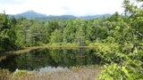 休暇村 乗鞍高原から徒歩10分「牛留池」