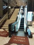 サンホテル名古屋ヴィア白川の2Fフロントへ上がるエスカレーター
