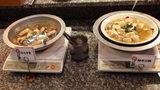 お宿木の葉の夕食のはもすきと海老豆腐