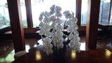お宿木の葉の飾ってあった胡蝶蘭