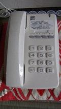 秘湯にごり湯の宿渓雲閣の部屋の電話機