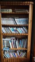 秘湯にごり湯の宿渓雲閣のロビーの書棚