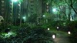 グランドプリンスホテル京都のライトアップされた中庭
