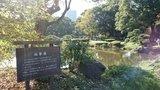 日比谷公園の心字池