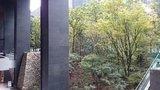 大手町タワー「大手町の森」