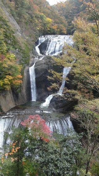 袋田温泉の紅葉