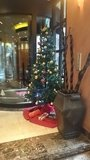 ザ・ビーお茶の水のロビーのクリスマスツリー
