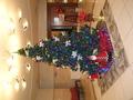 ロビーの特大クリスマスツリー