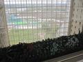 ホテル内から見た中庭とプール