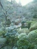 山奥の秘湯の宿です