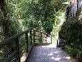 大滝の湯におりていく階段