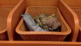 脱衣所のかご