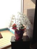 ダイニングバー入り口の蘭の花