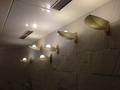 洋風風呂洗い場の照明
