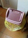 脱衣所のゴミ箱