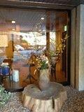 正面玄関の花