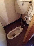 ロビー横のトイレ。和式便所