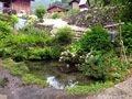宿入り口の池