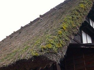 年代を経た茅葺き屋根。