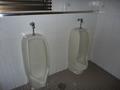 1階男子トイレ(小用便器)