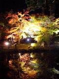 紅葉が見事な円通院