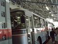 日本唯一のトロリーバス(アルペンルート1)