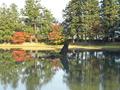 周辺の観光地 平泉・大泉が池(浄土庭園)