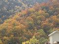 秋の扇沢 (アルペンルート1)