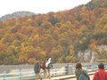 秋の黒部湖(アルペンルート3)