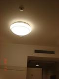 天井にも電気が