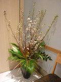 25階日本料理「旬彩」の入口にある、梅の生花