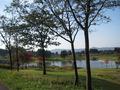 敷地内の大きな池