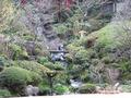 日本庭園(庭)
