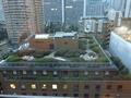 別館12階階からの眺望(真向かいのビルの屋上庭園が見えます)