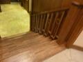 客室館の階段(上からみおろす)