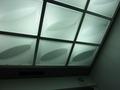 スタイリッシュな天井(エレベーター)